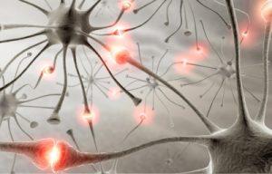 Pięć  sposobów na utrzymanie sprawnego umysłu w zdrowiu i chorobie