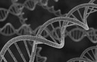 Badania genetyczne u dzieci niskorosłych  cz. 2