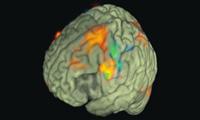 Naprawić uszkodzoną mielinę