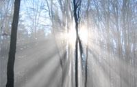 Napady padaczkowe a warunki pogodowe