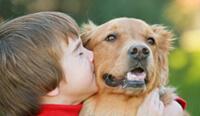 Profilaktyka psem